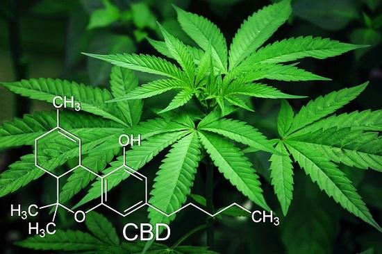 Marijuana Dosing
